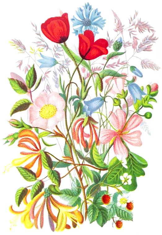 German Folk Flower Art